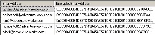 Encrypted Email Address field in AdventureWorks sample SQL Server database