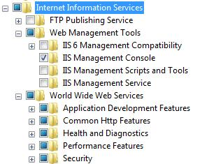 IIS Features