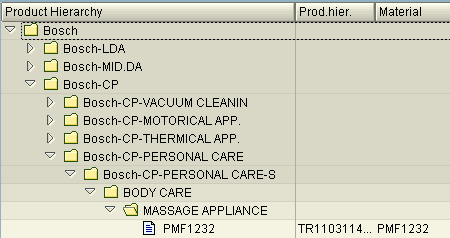 sap-product-hierarchy-table-output