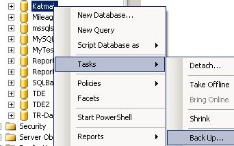 sql-server-database-sql-backup-task.PNG