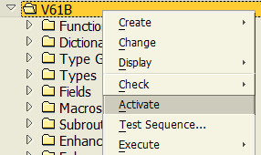activate SAP function group