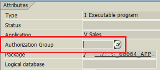 Authorization Group in ABAP program