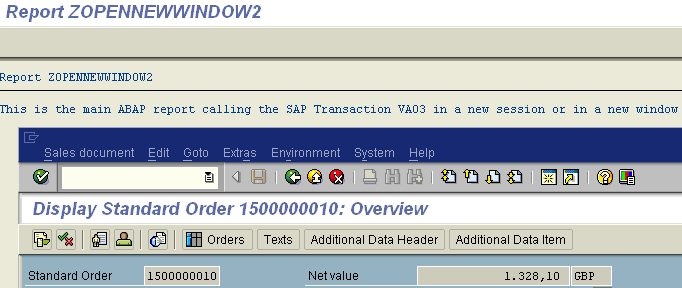 launch SAP transaction in new ABAP window