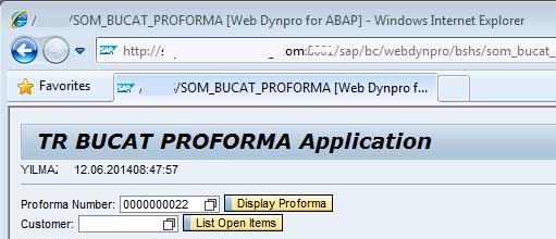 set web page title for SAP Web Dynpro application
