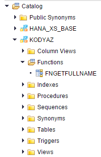 SQL functions listed under SAP HANA catalog
