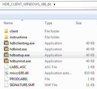 hdbsetup.exe for SAP Hana Express Edition Client tool