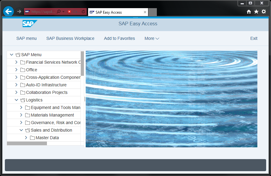 SAP Belize theme on S/4HANA Web GUI