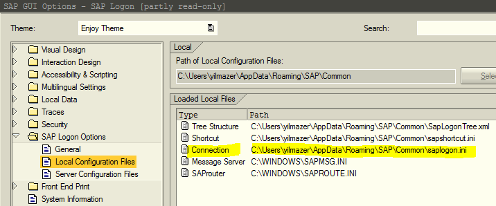 saplogon.ini local configuration file