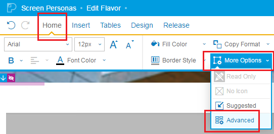 SAP Screen Personas Combo Box options