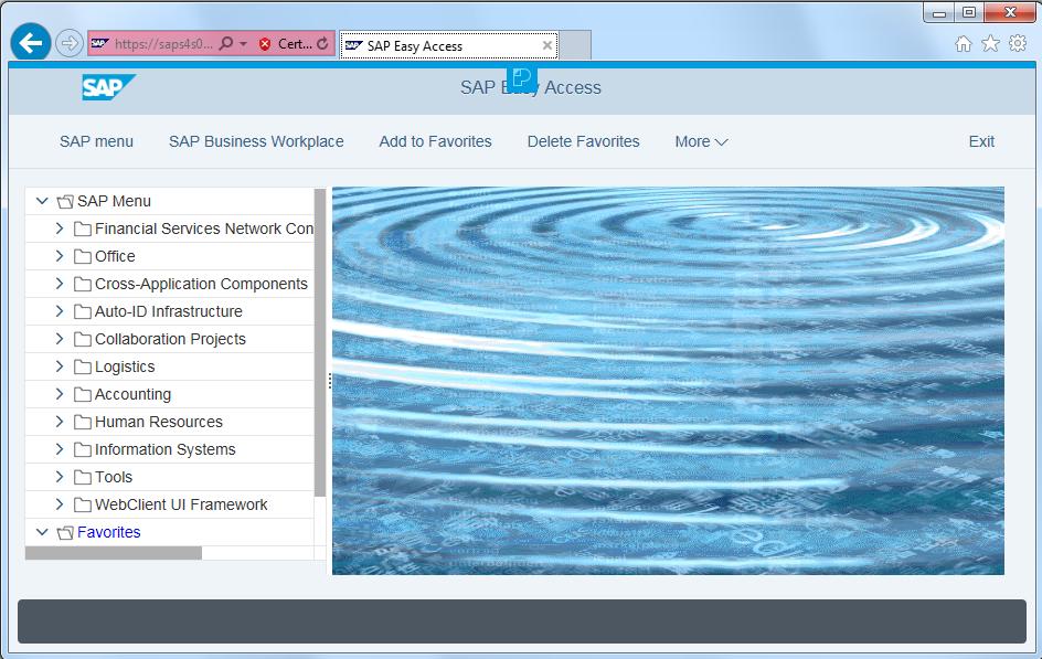 SAP WebGUI Belize theme for Screen Personas