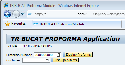 SAP Web Dynpro application page title on browser