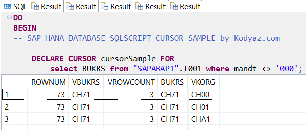 SQLScript cursor execution on SAP HANA database