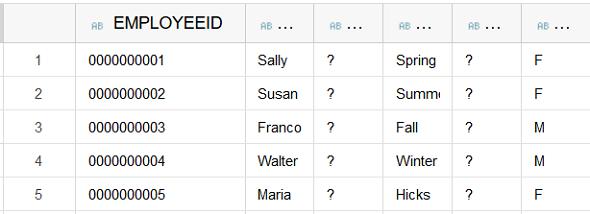 zero padding on sample SAP HANA database table content