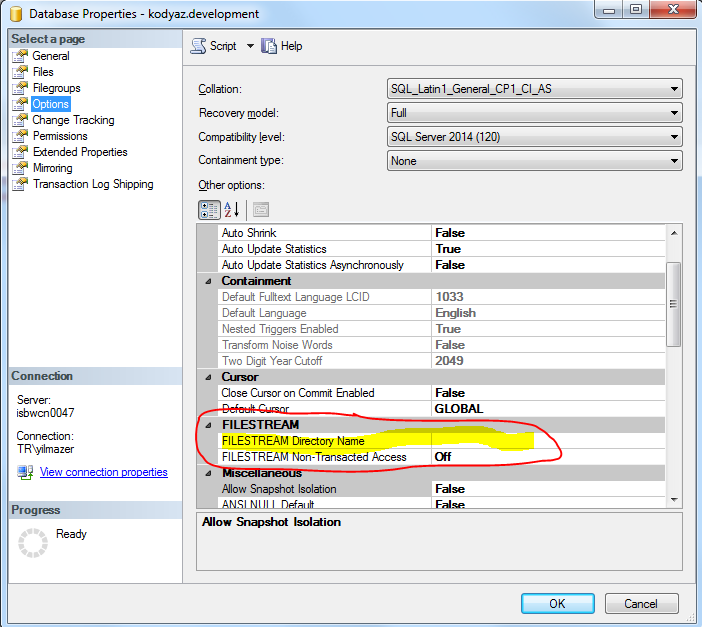 FileStream directory name configuration on SQL Server database