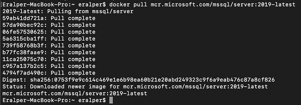 download docker image of SQL Server 2019 latest release