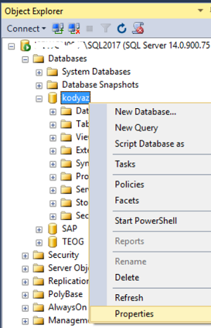 display database properties using SQL Server Management Studio