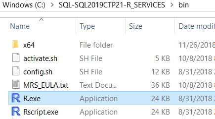 SQL Server R for Windows Rterm tool