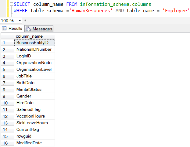 SQL Server Information Schema View for columns of a table