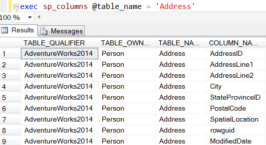 list of table columns using sp_columns SQL Server system procedure