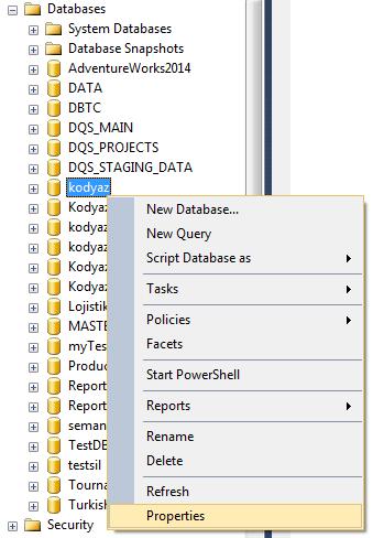 SQL Server Management Studio display database properties