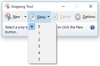 Windows Snipping Tool with delay for screen capture