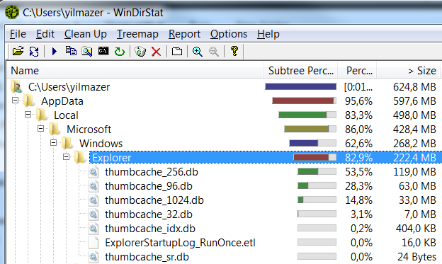 thumbcache files where thumbnails are cached seen on WinDirStat