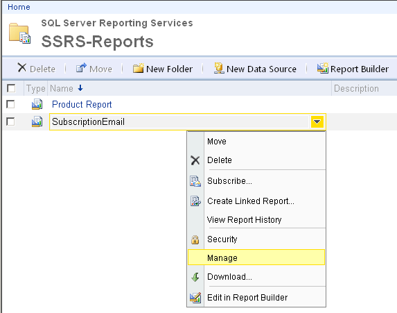 manage SQL Server Reporting Services report