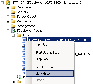 SQL Server Management Studio View Job History tool