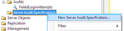 create new Server Audit Specification using SSMS